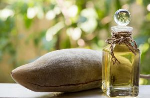 دیگر محصولات درخت بائوباب