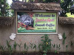تابلوی مزرعه پرورش قهوه لاواک