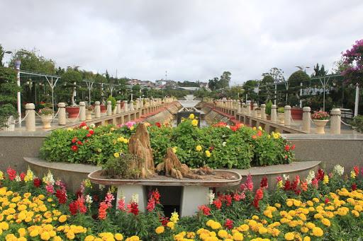 باغ گل یکی از فروشگاه های دالات ویتنام