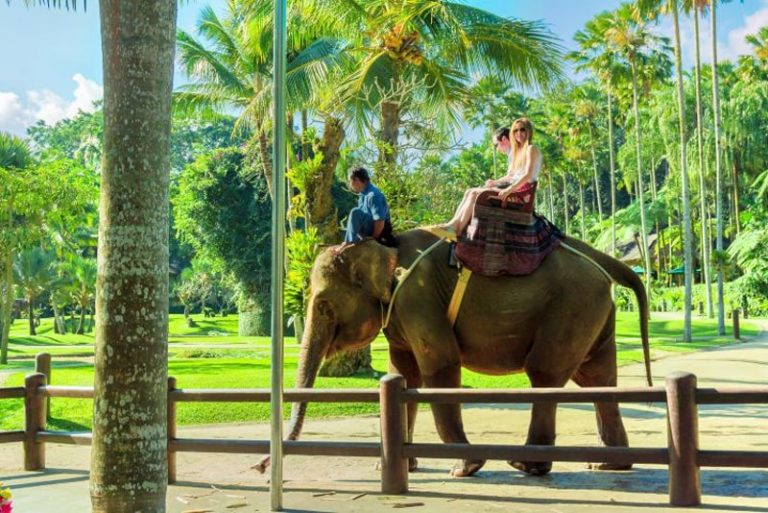 تور ترکیبی مالزی بالی ویتنام